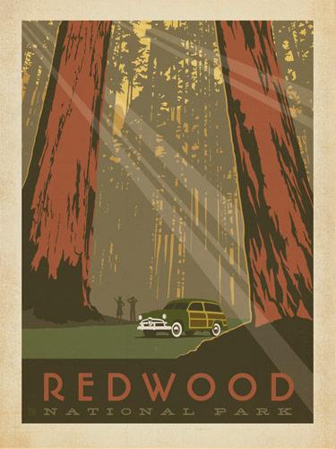 ASA_NP_Redwood_pop